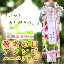 花うるるのハーバリウム ギフト 限定色の敬老の日ver登場 プレゼント 花 プリザーブドフラワー ボトル (お中元 サマー…