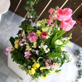 春の寄せ植え 花うるるアレンジ『チューリップ 寄せ植え 選べる陶器鉢』 開花期:〜4月 花束 鉢植え ギフト プレゼント 新築祝い 結婚祝い 誕生日