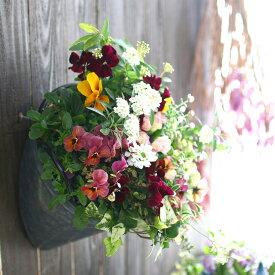 春の寄せ植え 花うるるアレンジ『メタルポット 寄せ植え Sサイズ』 寄植え ブリキ メタル ハンギング 花束 ギフト プレゼント 新築祝い 結婚祝い 誕生日 玄関