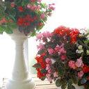 ●立体花壇を作ろう(^o^)丿●「スリットプランター」  (寄せ植え・屋外・玄関・ガーデニング 鉢 ガーデングッズ 寄せ植え)