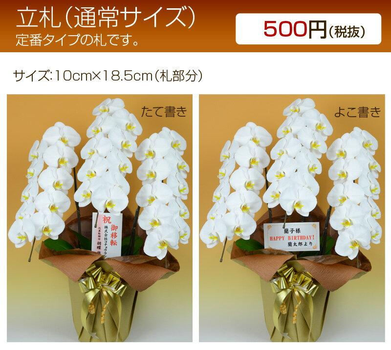 立札orメッセージカード【単品販売不可・胡蝶蘭と一緒にご購入ください】