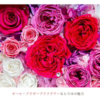 flower-tamesi
