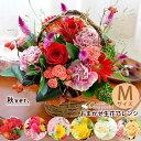 冷蔵便でお届け 季節のおまかせアレンジ Mサイズ 生花 アレンジ ハロウィン ギフト フラワーアレンジメント お祝い 花…