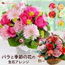 バラと季節の花 おまかせ生花アレンジ Mサイズ フラワーアレンジメント 花 ギフト お誕生日 お花 お祝い 誕生日 プレ…