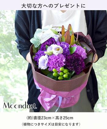 [冷蔵便]でお届け花瓶いらずの花束そのままブーケwithMoondustムーンダストカーネーション「永遠の幸福」を意味する特別な花画像配信記念日ギフト結婚祝いお誕生日お花プレゼント女性母祖母祖父女友達定年退職祝い花束ギフト父の日花