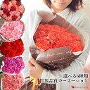 エントリーでP5倍!早割 母の日 カーネーション 花 プレゼント ギフト 送料無料 世界品質 カーネーションの花束 〜 選…
