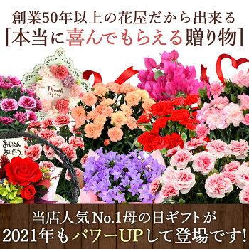 早割母の日ギフト2019母の日ギフトプレゼント花送料無料カーネーションプリザーブドフラワーソープフラワー組合せ39通り13種類から選べるお花と3種類から選べるスイーツのセット母の日プレゼント鉢植え花とスイーツセット