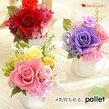 【30代女性】卒園式にお世話になった担任の先生へ!可愛いお花のおすすめはありますか?