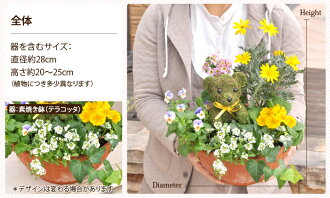 Hanayoshi rakuten global market like flowers topiary bonsai product name product name product name negle Images
