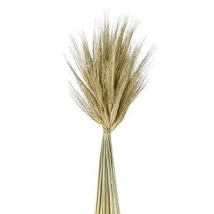 大麦スワッグ ドライフラワー 穂 スワッグ 花材 ナチュラル ハーバリウム アレンジメント 飾り付け インテリア 豊作 麦 秋