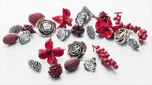 ドライフラワー 装飾素材 詰め合わせ 花材 クリスマス リース ミックスコーン レッドスノー クリスマスツリー 飾り 木の実 ワタカラ ミニハス2cm スターコーン ケーンフルーツ カネラチップ