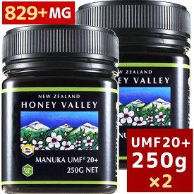 あす楽対応 [マヌカハニー][アクティブ マヌカハニー UMF 20+ 250g MGO829以上]★2個セット 天然蜂蜜 はちみつ[HLS_DU][RCP]