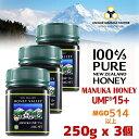【アクティブ マヌカハニー UMF 15+ *250g】★3個セット 無農薬・無添加ニュージーランド天然蜂蜜/はちみつ ハニーバ…
