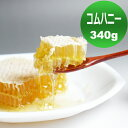 自然のままの貴重なハチミツ 【コムハニー 340g】 ハニーバレー コームハニー 巣蜜(巣みつ)【HLS_DU】【RCP】