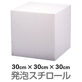 発泡スチロール ブロック 白 ホワイト 300×300×300mm