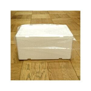 発泡スチロール 小型 クールボックス / 発泡スチロール容器 DB-2 約7.5L 2375460 取寄せ商品 送料別 通常配送 / 箱 保冷 保冷ボックス 発泡ケース