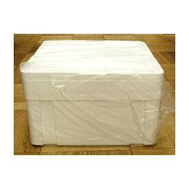 発泡スチロール クーラーボックス / 発泡スチロール容器 ASA-H 約28L 2375524 取寄せ商品 送料別 通常配送 / 箱 保冷ボックス 発泡ケース