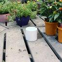 陶器鉢 植木鉢 ホワイトポット丸型 Sサイズ 直径9cm×高さ9cm