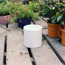 陶器鉢 陶器 鉢 植木鉢 丸 / ホワイトポット丸型 Mサイズ 直径13cm×高さ13cm 底穴あり 白 陶器鉢 化粧鉢 円柱 園芸 …