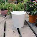 陶器鉢 陶器 鉢 植木鉢 丸 / ホワイトポット丸深型 Lサイズ 直径18cm×高さ18cm 底穴あり 白 陶器鉢 化粧鉢 丸型 菱型…