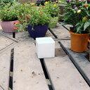 陶器鉢 植木鉢 ホワイトポット角型 Sサイズ 直径9cm×高さ9cm キューブ