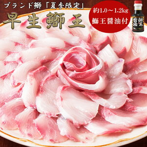 日本一の養殖ブランドブリ「鰤王」フィレ 1枚入 約1500g(1.5kg) 鹿児島県 刺身 真空パック ぶりしゃぶ ブリの緑茶しゃぶしゃぶ 照り焼き ぶり大根 ブリ冷凍 ブリ茶漬け ブリめし ぶりめし ブリ