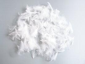 フライマテリアル CDC 1g [001-Fe]羽根 羽毛 材料 釣り 毛針 毛鉤 タイイング パーツ フェザー