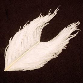 フライマテリアル オーストリッチ・ウィング 1本[043-Fe]羽根 羽毛 材料 釣り 毛針 毛鉤 タイイング パーツ フェザー
