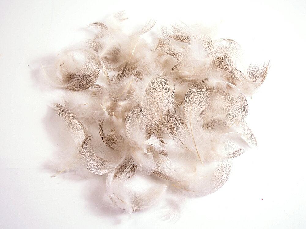 グレイマラード 3g[002-Fe-N]ナチュラル/フライマテリアル 羽根 羽毛 材料 釣り 毛針 毛鉤 タイイング パーツ フェザー