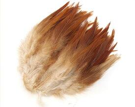 フライマテリアル スペイコック 30本 [027-Fe-NBRN]ナチュラルブラウン/羽根 羽毛 材料 釣り 毛針 毛鉤 タイイング パーツ フェザー