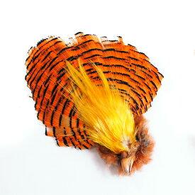 フライマテリアル ゴールデンフェザント ヘッド 1ヶ [016-Hd] 羽根 羽毛 材料 釣り 毛針 毛鉤 タイイング パーツ フェザー