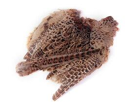 フライマテリアル ヘンフェザント・ボディ・スキン 1羽 [006-Bs-N]羽根 羽毛 材料 釣り 毛針 毛鉤 タイイング パーツ フェザー