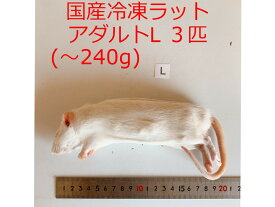 国産 高品質 冷凍ラット アダルトL 3匹 爬虫類 猛禽類 肉食魚 哺乳類 ヘビ トカゲ ハリネズミ
