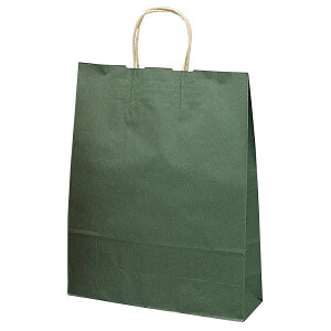 手提げバッグ エメラルド 大 50-5308 | バッグ bag 紙バッグ 紙袋 手提げ袋 マチあり プレゼント ギフト 包装 梱包 誕生日 ギフト シンプル かわいい おしゃれ アクセサリー 小物 レジ 袋 雑貨