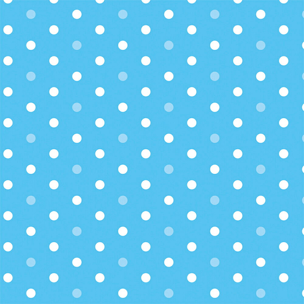 包装紙 ミニョンスカイ 半才判 49-1150 | ラッピング用品 ラッピングペーパー ペーパー ラッピングシート 紙 ギフト ギフトラッピング 包装資材 梱包材 贈り物 プレゼント プレゼント包装 誕生日 飾り 包む 用紙 雑貨 事務用品 文具 贈答用 ササガワ かわいい ドット 水玉