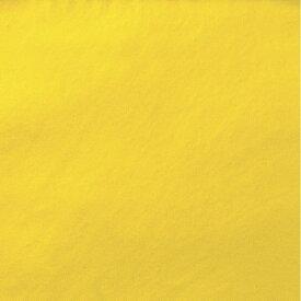 金紙 H 小判 31-31 | ササガワ(タカ印) 金色 金 ゴールド 紙 用紙 色紙 100枚 業務用 大容量 折紙 折り紙 origami オリガミ 単色 無地 工作 ペーパークラフト ちぎり絵 アート 材料 幼稚園 学校 文化祭 学園祭 芸術 ボックス にち