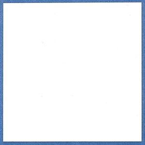 敷紙 青枠 並口 5号 26-2025   お菓子 洋菓子 和菓子 紙 茶菓子 和紙 お料理 料理 枠 縁取り 敷き紙 ギフト マナー 四角 正方形 スクエア 贈答品 贈答 ササガワ(タカ印) 法事 仏 お供え お茶 茶