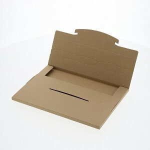 ラクポスボックス265-10 42-3144 | 宅配 配達 ボックス 箱 格安 段ボール ポスト 新聞受け 安い 組立て 簡単 ミシン目 小さい 小 ネコポス クイックポスト