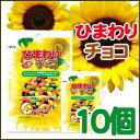 ひまわりチョコ 1BOX★10袋【ヘテ 】