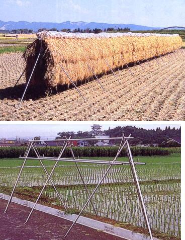 ★[法人様宛は送料無料(送料区分B)]■稲の掛干し ほすべー 3段掛(B-1) 5畝歩用(5a)