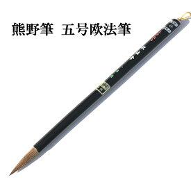 筆 習字 書道 大筆 書道 大筆 半紙 用【熊野筆】一休園 イタチ毛五号欧法筆