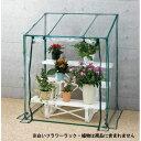 フラワースタンド用温室 /温室 ビニール温室 /RCP