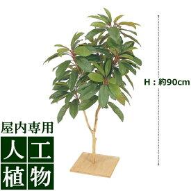 /人工植物/グリーンデコ ユズリハ 板付 90cm