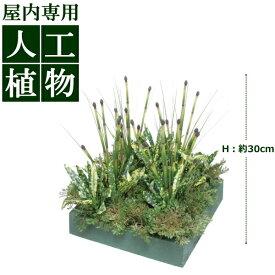 /人工植物/グリーンデコ 山里セット イワヒバ 30cm