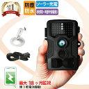 防犯カメラ 屋外 トレイルカメラ ワイヤレス 電池式 工事不要 小型 家庭用 長時間 監視 防水 防塵 人感センサー 人体…