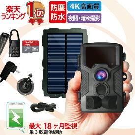 防犯カメラ 屋外 ソーラー 太陽光 充電 トレイルカメラ ワイヤレス 電池式 監視 防水 防塵 人感センサー 動体検知 赤外線 駐車場 車庫 車上荒らし microSDカード 野外 延長保証【第二世代】DVR-Z1[NL]