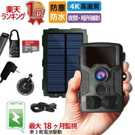 防犯カメラ 屋外 ソーラー 太陽光 充電 トレイルカメラ ワイヤレス 電池式 監視 防水 防塵 人感センサー 人体感知 動体検知 赤外線 駐車場 車庫 車上荒らし microSDカード 野外 延長保証【第二世代】DVR-Z1 Plus[P]