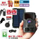 【今だけ さらに32GB microSDプレゼント】防犯カメラ 屋外 ソーラー 太陽光 充電 トレイルカメラ ワイヤレス 電池式 …