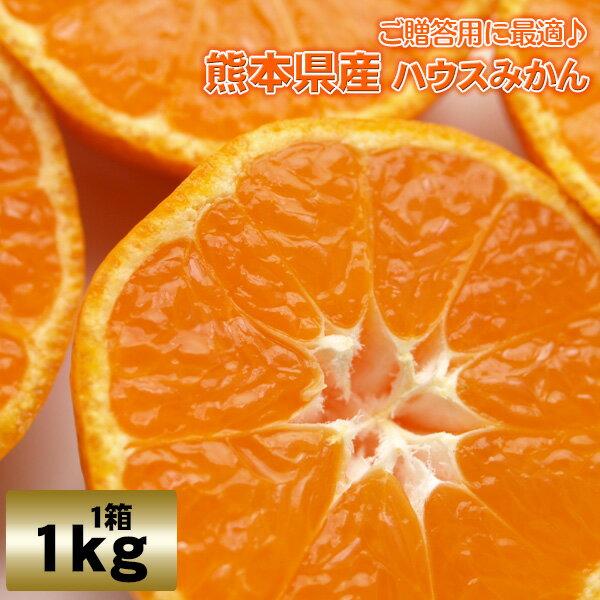 ハウスみかん2.5kg熊本県産【S】赤秀 熊本/九州/みかん/ハウスみかん/甘い/送料無料/