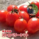 ストロベリートマト 2kg+おまけ付♪九州/野菜/熊本/新鮮/安全